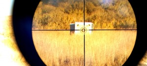 minnesota gun rights restoration